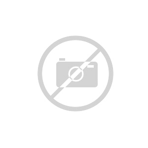 DAF XF SSC My2017 - 90 aniversario Wsi Models 04-2063 escala 1/50