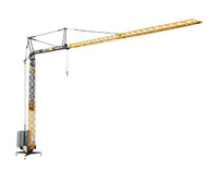 Liebherr 81 K grúa de montaje rápido, Nzg 870 escala 1/50